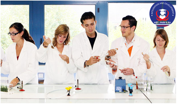 Sinh viên học ngành Công nghệ sinh học có thể dễ dàng tìm được một công việc tại Pháp