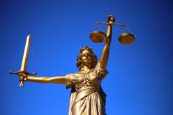 Ngành Luật tại Canada